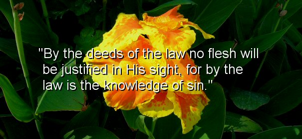 Image - By the deeds of the law no flesh will be justified in His sight, for by the law is the knowledge of sin.