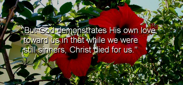 Image - But God demonstrates His own love toward us, in that while we were still sinners, Christ died for us.