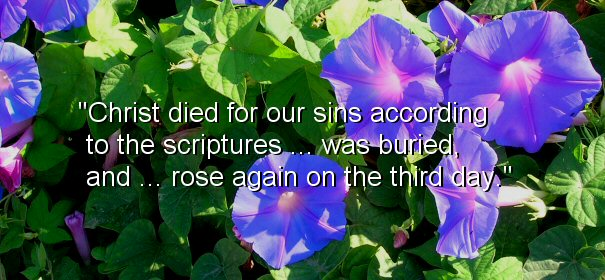 Image - Christ died for our sins according to the Scriptures..was buried, and...rose again on the third day.